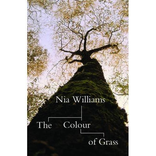 Seren has a new book release The Colour of Grass by Welsh author Nia Williams. The Colour of Grass by Nia Williams is a story about families, past and present, and life's unexpected connections. With family history flourishing online, on TV and in Magazines, The Colour of Grass is a gentle and touching story of families past and present, the identites we create for life's unexpected connections and ourselves.
