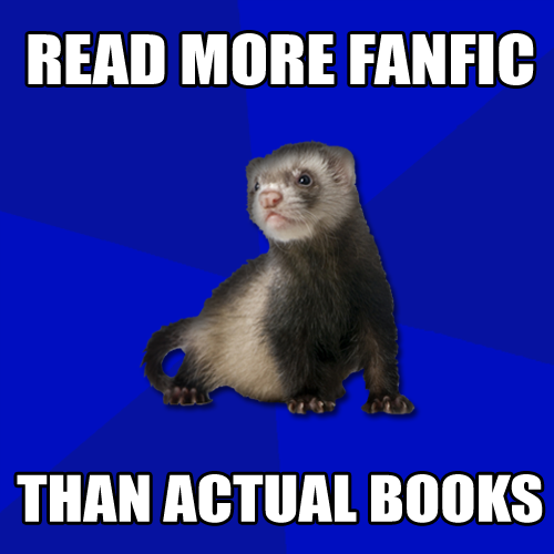 fandomferret:  (Submitted by cece-halpert)