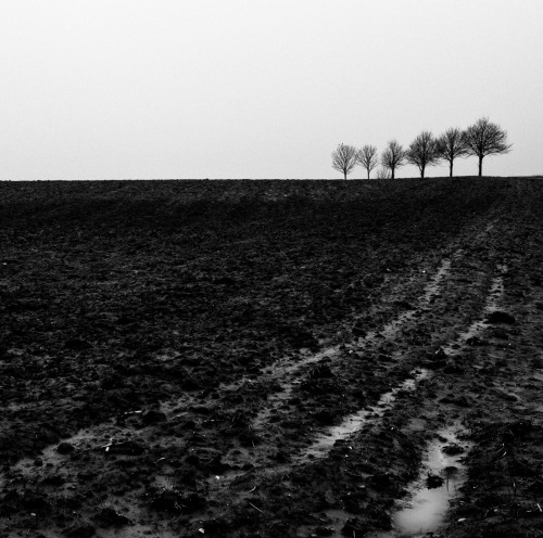 Countryside in the rain, near Duesseldorf, 2011.