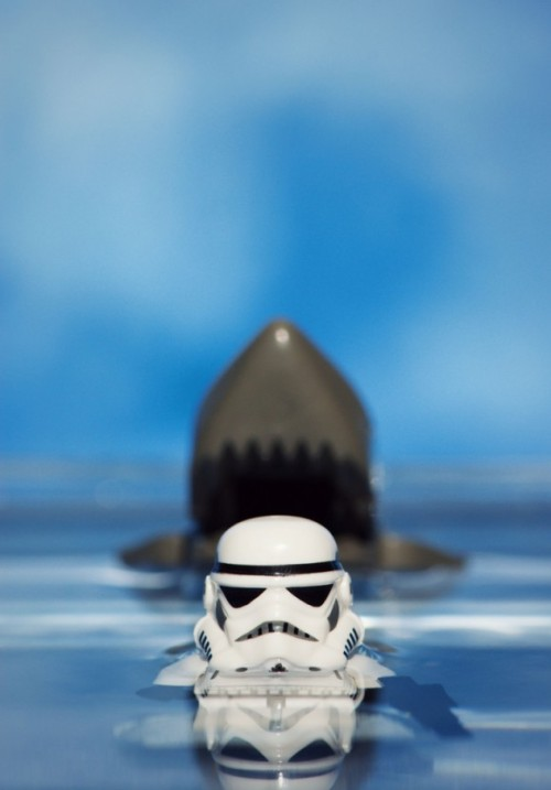 Stormtrooper & Shark // By: Mike Stimpson  Via:(itstarwars || koldunkisloty)