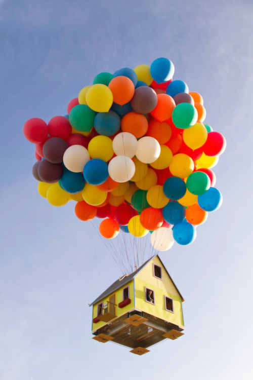 National Geographic recreation of Pixar's UP!  Adventure is out there!