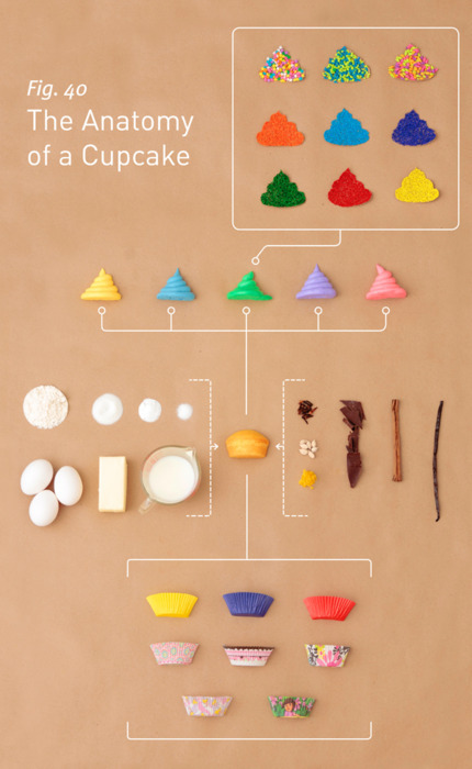 Anatomy of a Cupcake  Via OhCupcakes.net.