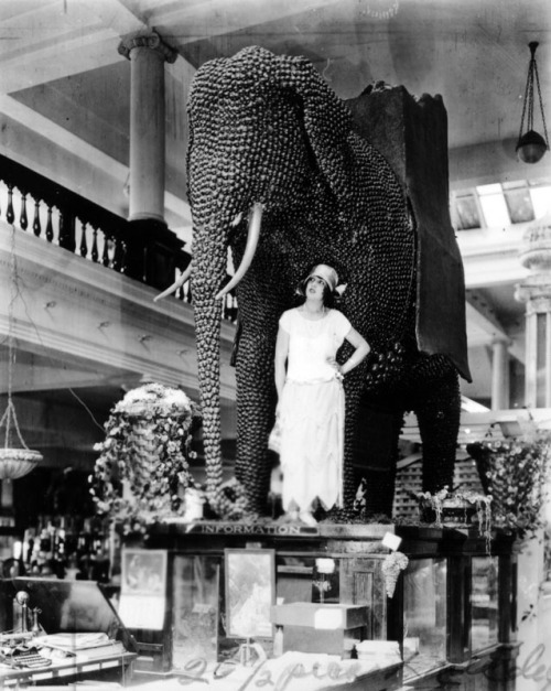 Date unknown Mabel Normand with an elephant made out of walnuts.  (via unexplainedcinema)