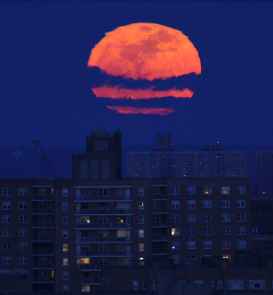 kateoplis:  Super Moon over Bronx by Mike Segar/Reuters