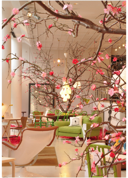 aliceiswonderful:  The Conran Shop