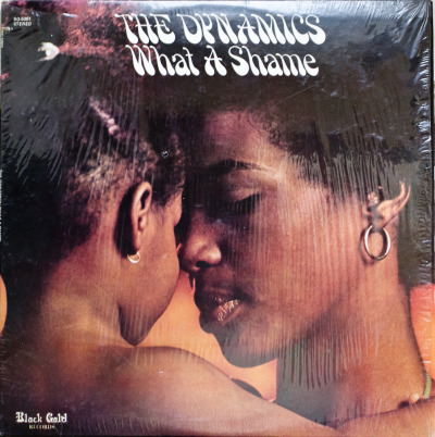 The Dynamics - What A Shame Label: Black Gold Cat#: BG-5001 Soul, USA, 1973 RYM / Discogs