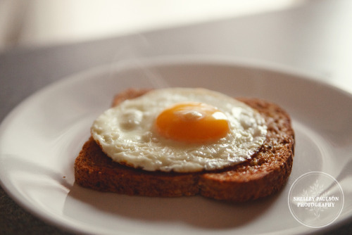 Day 80 - Steamy Fried Egg on Toast