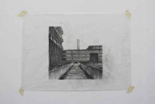 UEA pencil on tracing paper