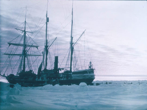 NPR has some great photographs of antarctica taken in 1914
