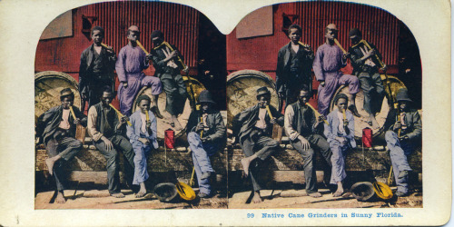 """Native Cane Grinders in Sunny Florida"" Stereoview ©WaheedPhotoArchive, 2011"