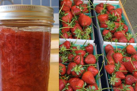 Strawberry freezer jam Making strawberry jam is the easiest thing on the planet. Seriously. Out of all the canning I do, this is the most cut and dry. Simple. And there's nothing better than homemade strawberry jam on toast when the weather is frightful out. So, on to our ingredients. There are only FOUR ingredients, can you handle it? Strawberries {washed, hulled, and blended}Lemon JuiceSugarPectin Click on pix for more info.