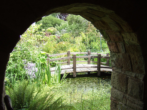 little bridge (by secretsofabutterfly)