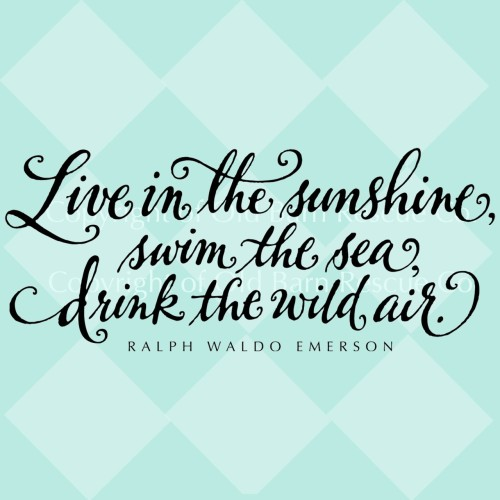 live in the sunshine, swim in the sea, drink the wild air. - ralph waldo emerson{via etsy}