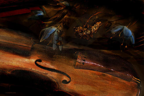 jerzee55:  Still Life With Violin By Ron Jones