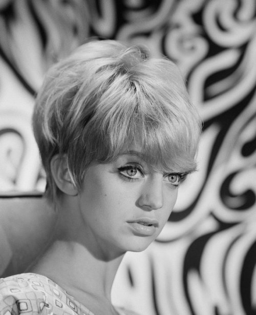 Beautiful shot of Goldie Hawn from DaVinci's Barber blog.  Bambi eyes and blonde pixie crop  - incredible.