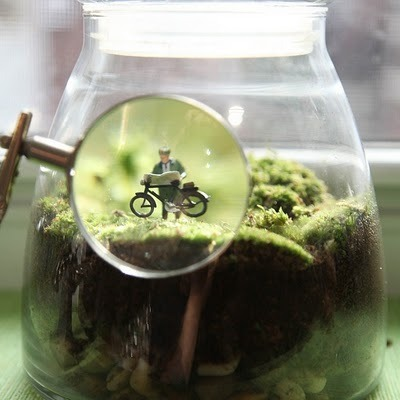 Tiny life inside terrariums by Twig Terrariums (via).