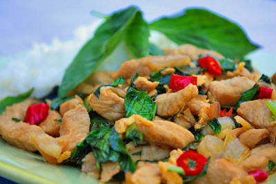 Thai basil and pork stir fry