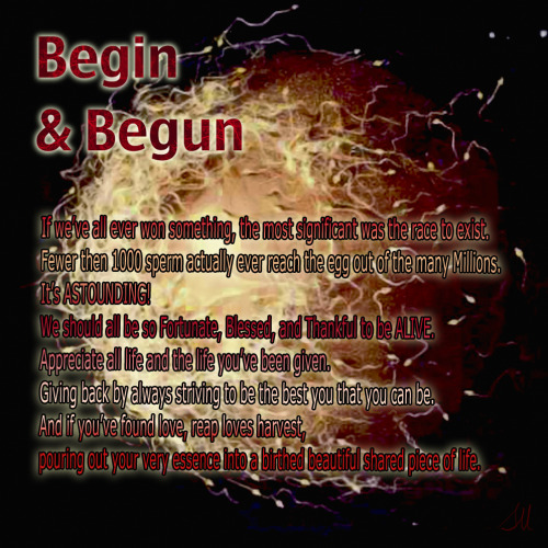 Begin & Begun