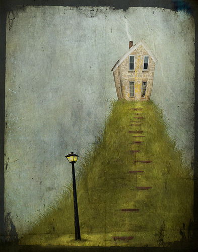 Ezra seems to be at home…  (by jamie heiden)