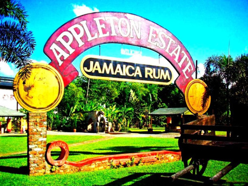 Appleton Tour- it's a great tour and they have the best rum in the world. It's a long, but beautiful drive from montego bay and Negril.