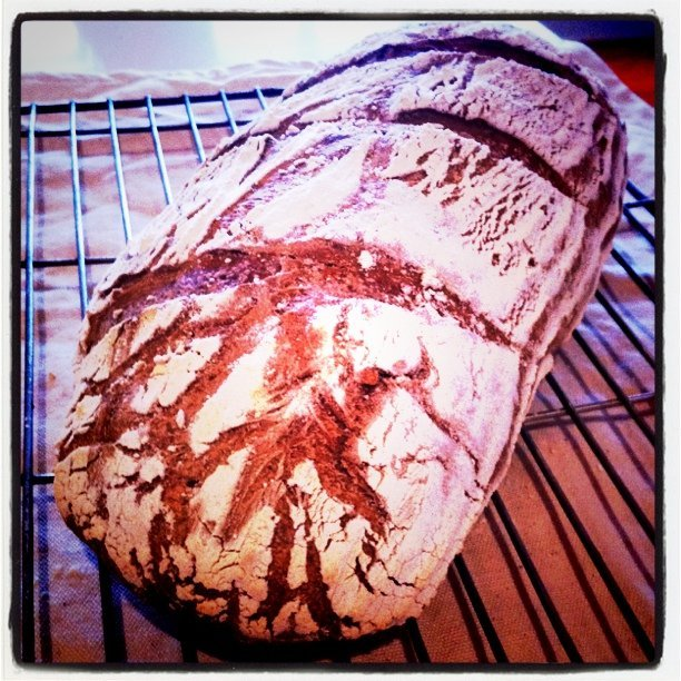 Bread using an experimental Gallows Hill Brewing Co. Stout #realbeer #weloverealbeer (Taken with Instagram at 102 Loader Street)