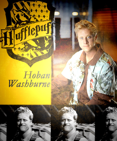 "Hogwarts House Sorting meme kaidasalene asked: Hoban ""Wash"" Washburne from Firefly  ""Can we maybe vote on the whole murdering people issue?"""