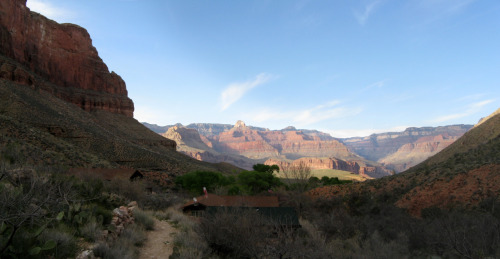 The view back out into the Canyon from Indian Gardens campground. I just had to sit here and stare for what seemed like forever