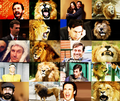 Lions that look like Jon Hamm (inspired by Puppies that look like Jimmy Fallon)