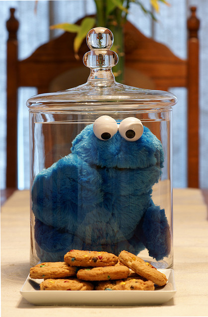 misscalyxoxo:  cookie monster<3