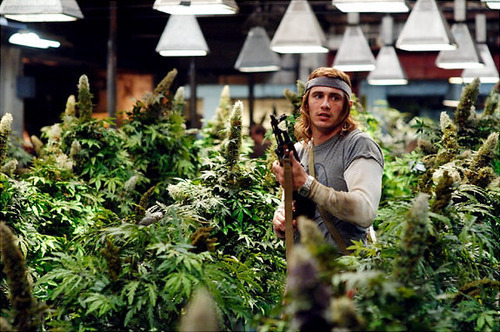 "brakefielddd:  What's your favorite ""weed"" related movie?"