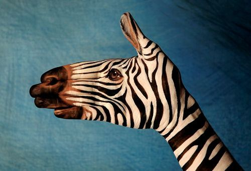 Body Art - Hand Animals / Optical Illusions