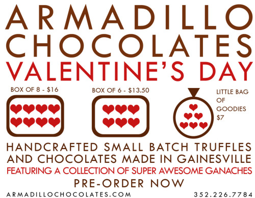 Armadillo Chocolates Promotional Flier