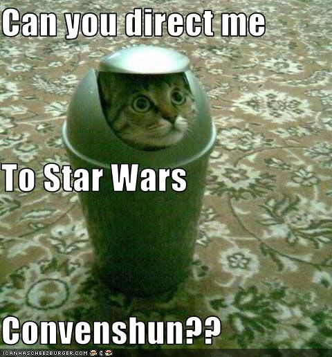 hipstarwars:  I don't really like cats, mainly due to being allergic, BUT I can make an exception for this cutie.