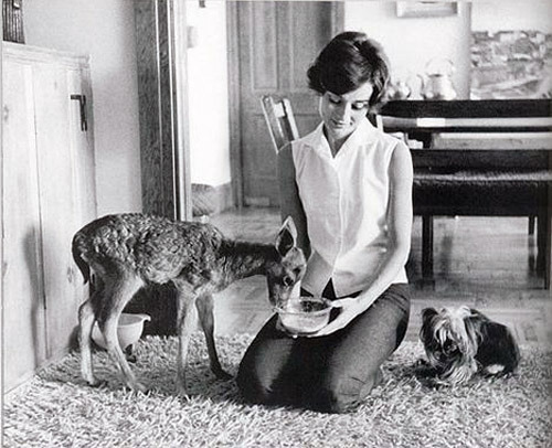 Audrey Hepburn had a pet fawn called Pip. And this is her dog, Famous. This makes me so so happy because like almost every female with a penchant for anythin half-vintage, I love her. And more importantly, I've never really connected with my pets. I think I've had every domesticated animal imaginable. Seriously. But I dont think I loved them the way I should have because I was sorta longing for ridiculous anmals. Tigers and such. Now, I'll probably die dreaming about unicorns, but in this life, all I really want is a swan. I'll call her Isis. And I'll sit outside in my wicker chair and play the harp for her. Because at that point in my life I will be able to afford the swan, the lake the swan frolicks about in, the harp she listens to AND the harp lessons necessary. Random thought though: I once read that all the swans in England are property of the Queen. Thats dandy and all, but I think Isis and I will steer clear of England whilst travelling. Just in case the Queen gets confused.