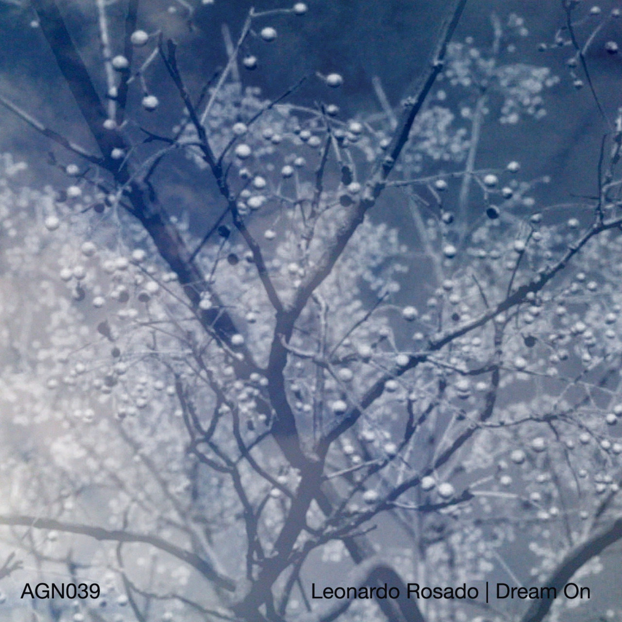 LEONARDO ROSADO - Dream On released by AudioGourmet (2011)  LISTEN/DOWNLOAD HERE Next on Audio Gourmet we welcome aboard Leonardo Rosado, an artist and curator of the Feedback Loop netlabel. Aside from running Feedback Loop, Leonardo's main musical focus explores the collision between sound, poetry and everyday life by using automatic expressions that he likes to call 'wordsoundscapes'. The construction of his music pieces expose daily life happenings that are individual and at the same time universal; it has a strong sense of suggesting a pause to think about our actions and our surroundings. Words and sounds have different meanings depending on the listener, but only if they take the time to delve into the complexity of their own stimuli. His past discography includes work released on the likes of his own Feedback Loop label as well as Test Tube, Relaxed Machinery, Public Spaces Lab, XS Records and Clinical Archives In addition to the sounds you can hear in 'Dream On', here is a collection of short poems for each track that offering an insight into the concept behind this project: REBUILDING THE DREAM here I am trying to fit old memories in new clothing forcing my rebirth DREAM ON feeling the heartbeat like a new born seeing through belly skin WIPED OUT when I hear that ringing I know that nothing will be left of me nothing worth singing about SLEEPLESS MURMUR turning around in bed counting sheep closing the eyes in darkness. nothing will stop the unrest the murmur of change