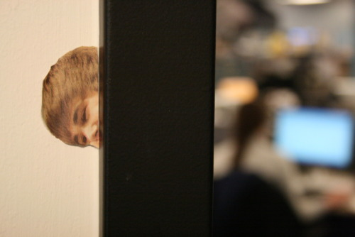 washingtonpoststyle:  Someone taped a Bieber cutout to the doorframe of our meeting space in the newsroom. It jarred us this morning.  Looks like he studied Spying in a Doorway at the Disney Channel Acting School.