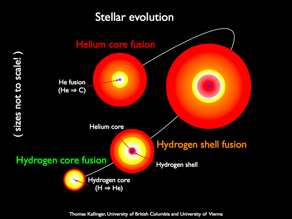 NASA's Kepler Mission Helps Reveal the Inner Secrets of Giant Stars for the First Time (Image credit: Thomas Kallinger, University of British Columbia and University of Vienna; via NASA) University of Sydney astrophysicists are behind a major breakthrough in the study of the senior citizens of our galaxy: stars known as Red Giants. Using high precision brightness measurements taken by the Kepler spacecraft, scientists have been able to distinguish profound differences inside the cores of stars that otherwise look the same on the surface.