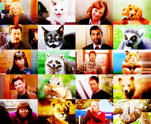 Animals that look like… The cast of Parks and Recreation