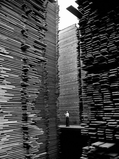 AMAZING anothereview:  Alfred Eisenstaedt A man standing in the lumberyard of Seattle Cedar Lumber Manufacturing. 1939