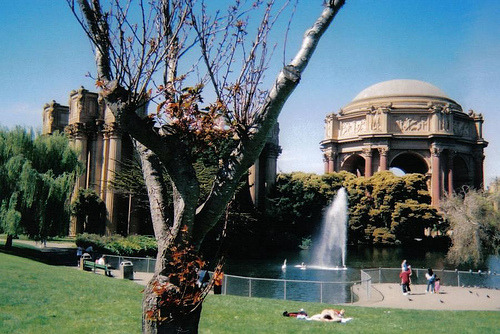 Palace of Fine Arts, San Francisco (by caorantheas)
