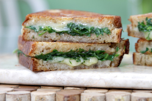 """Grilled Cheese Sandwich with Garlic Confit and Baby Arugula"" Click photo for recipe!"