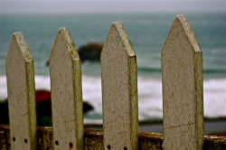 'The Other Side of the Fence' A white picket fence prevents me from falling down a precarious sea cliff; shot at Land's End, San Francisco. Know your limits.