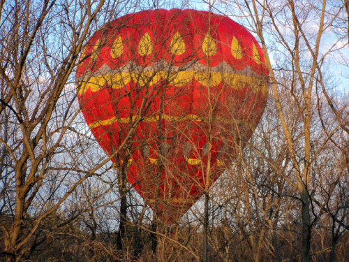 A hot air balloon got into a little bit of a predicament and almost landed in the trees behind our house.  Thankfully, the pilot was able to pull it back up.  I guess the passengers got a little extra thrill for their money.
