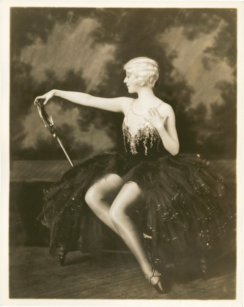 Dorothy Stone by Alfred Cheney Johnston.