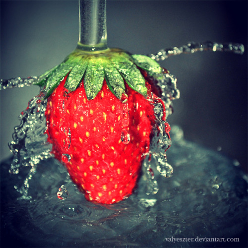 thesashabell:  (via strawberry by *valyeszter on deviantART)