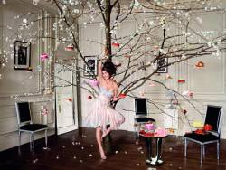 dallospazio:  Sofitel Hotels ad campaign by Tim Walker. The cake-leaden tree, again. We hold our Sydney event at Sofitel on Dec 6th.