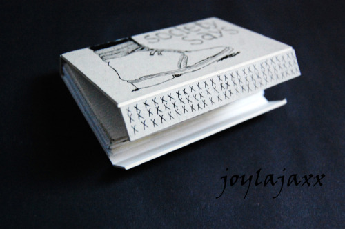 My shoe project is complete. This is the final concertina book in it's case. :D