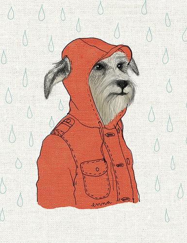 1000drawings:  hund im anorak (by ennaland)