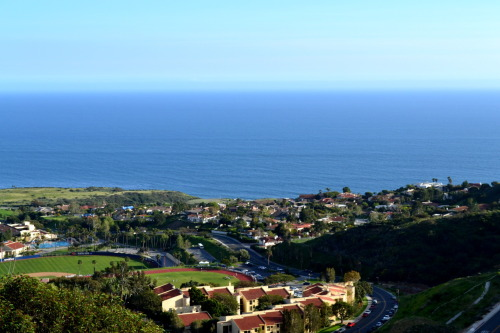 jjessicanovia:  Pepperdine University, Malibu Campus