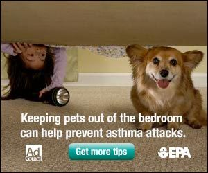 corgiaddict:  I normally try to ignore the side bar ads on websites, but this one caught my attention! Although I personally believe that a corgi's true place is in the bedroom, on the bed, belly up, possibly snoring. :) - Submitted by Sarah FG watch out fluffy corgi! The sticky found you!!